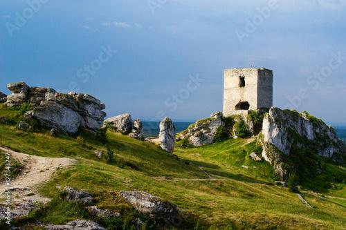 Foto op Aluminium Rudnes ruiny zamku w Olsztynie