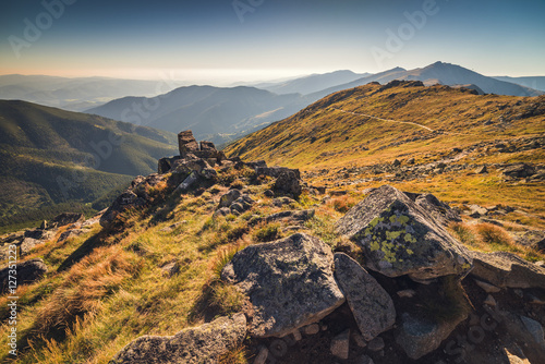 Papiers peints Colline Rocks in the Meadow Below the Hill in Low Tatra Mountains National Park, Slovakia in Summer.