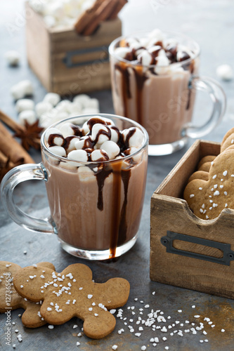 Foto op Canvas Chocolade Hot cocoa with marshmallows and cookies