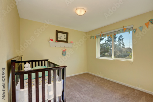 Pastel Yellow Interior Paint And Carpet Floor