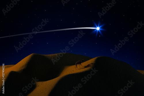 Photo  Suggestioni del Natale/scatto effettuato con tecniche multiple di Still life e c