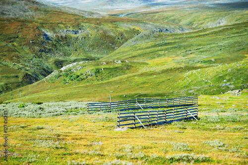 Fotobehang Zwavel geel Norway fence in mountains landscape background