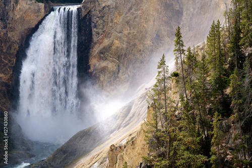 Poster de jardin Parc Naturel Lower Falls of the Yellowstone