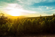 Sunset Over Trees And Hills In South Africa