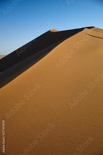 Poster Corail Maranjab desert dunes