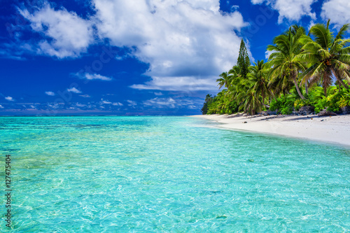 Fotografía  Amazing beach with white sand and palm trees, Rarotonga, Cook Is