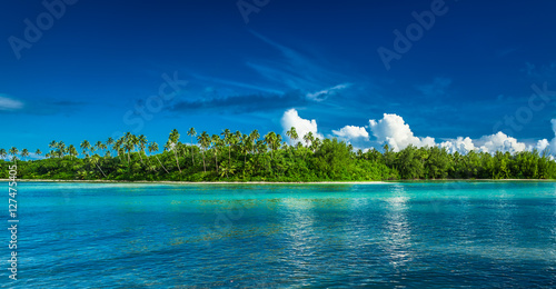 Photo sur Toile Ile Tropical Rarotonga with palm trees and sandy beach, Cook Islands