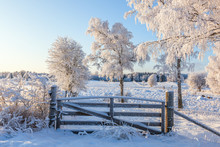 Gate At The Pasture In Winter Landscape