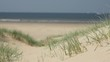 Unspoiled, clean and empty beach and dunes with helm grass with sea in the background.