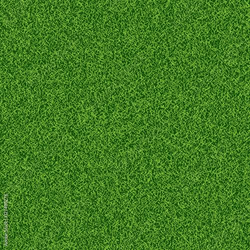 Green grass seampess texture - summer background Wall mural