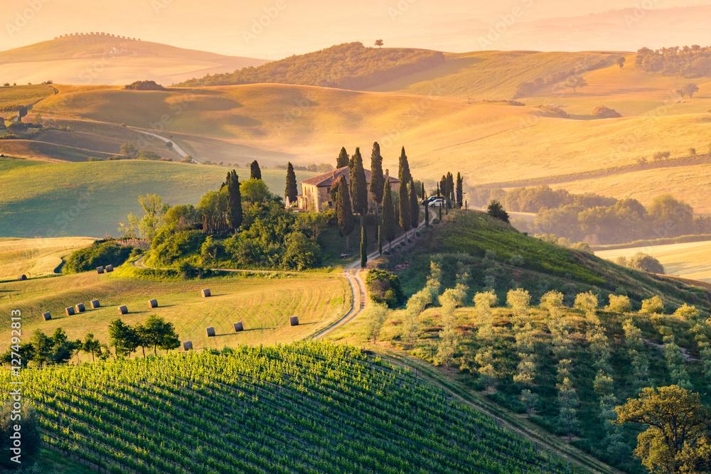 Fototapety, obrazy: Tuscany, Italy. Landscape