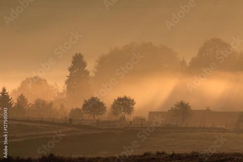 Foto auf Gartenposter Landschappen Landschaft im Nebel / Foggy Landscape