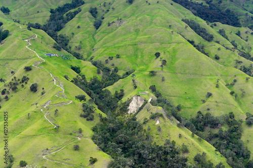 Fototapeta Steep Hills in Quindio obraz na płótnie