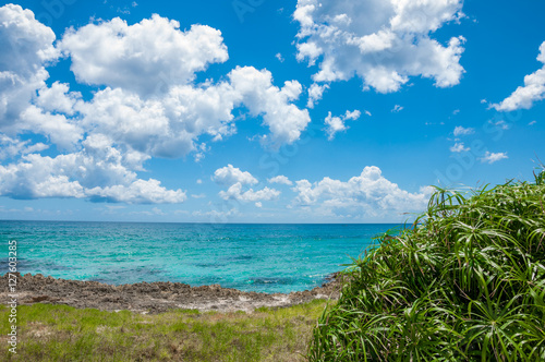 Fototapety, obrazy: Caribbean beach