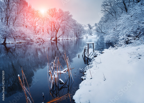 Poster Beautiful winter in forest on the river at sunset