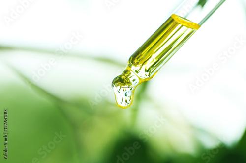 Valokuva  Pipette with essential liquid, closeup