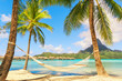 canvas print picture Empty hammock between palm trees on tropical beach