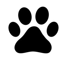 Dog Or Cat Paw Print Flat Icon...