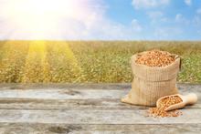 Buckwheat Grains And  Buckwhea...