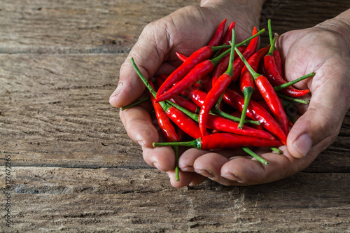 Photo Stands Hot chili peppers Red hot chili pepper in hand of old man on rustic wood table