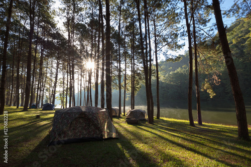 Photo sur Toile Cimetiere Camping and tent under the pine forest in sunset at Pang Ung pine forest park, Pang Ung Mae Hong Son, Thailand