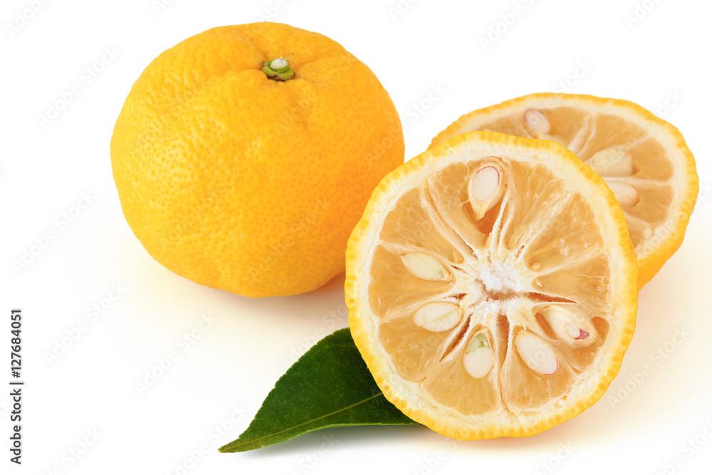 Fototapety, obrazy: Citrus junos on white background