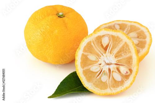 Fotografie, Obraz  Citrus junos on white background