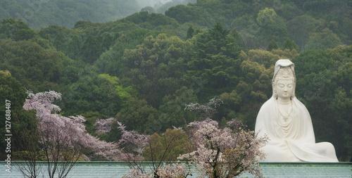 Foto op Plexiglas Japan Bodhisattva Avalokitesvara (Kannon) at Ryozen Kannon in Kyoto, Japan