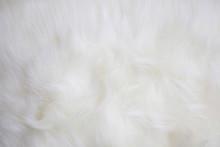 Artificial White Fur Texture