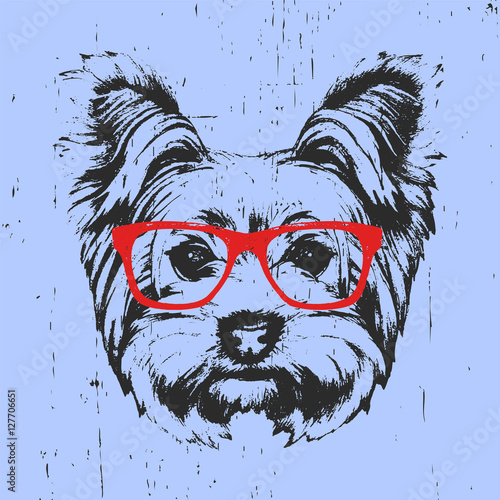 Photo sur Toile Croquis dessinés à la main des animaux Portrait of Yorkshire Terrier Dog with glasses. Hand-drawn illustration. T-shirt design. Vector