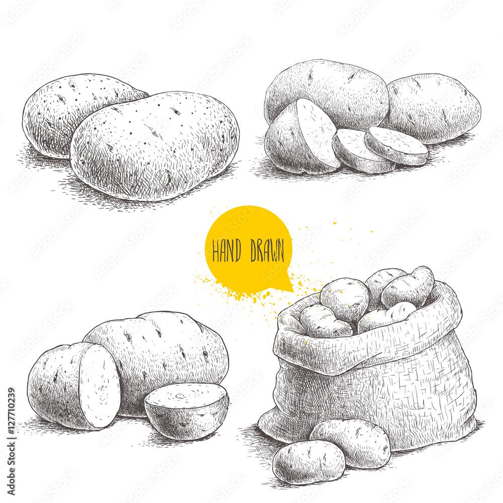 Fotografia Hand drawn sketch style set illustration of ripe potatoes