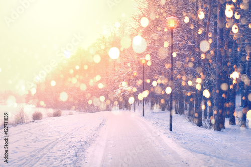 Color snowflakes on winter park background. Snowfall in park. Fototapet