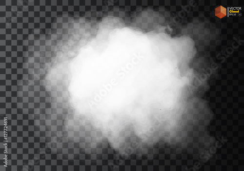 Garden Poster Smoke Fog or smoke isolated transparent special effect. White vector cloudiness, mist smog background. illustration