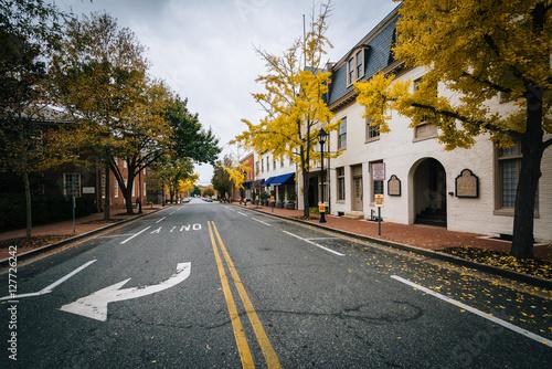 Fotografie, Obraz  Autumn color along Federal Street, in Easton, Maryland.
