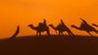 canvas print picture - Schatten einer Karawane in den Dünen der Sahara vor Merzouga (Erg Chebbi); Marokko