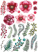 Collection With Watercolor Bright Red Flowers, Berries, Green And Blue Leaves