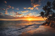Sunrise On A Tropical Island. Palm Trees On Sandy Beach.