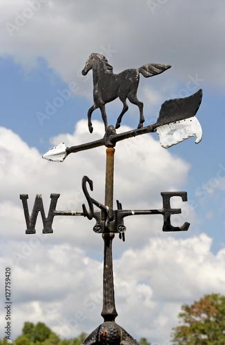 Horse weather vane. Vertical. Canvas Print