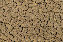 Cracked And Parched Earth In A Dried Lake Bed, Pushkar, Rajasthan, India