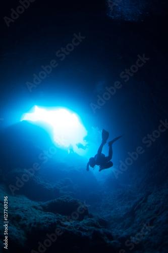 Fotobehang Duiken shark adventure