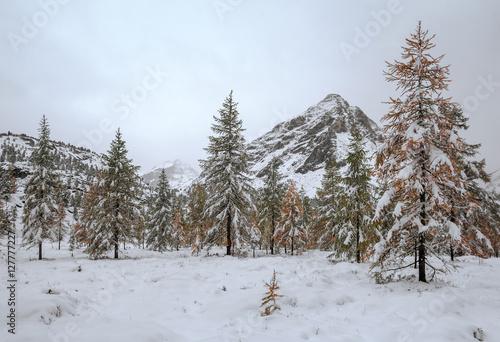 Fotobehang Autumn in mountains Eastern Sayan