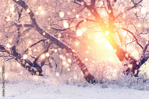 Color snowflakes on snowy background Fototapete