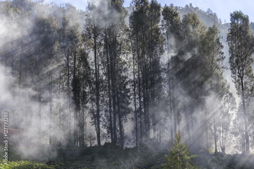 Photo  general landscape surround Mt Bromo, Indonesia