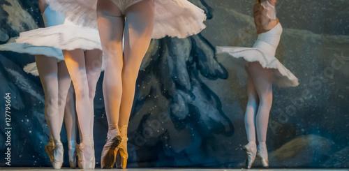 expressive ballet photo Fototapeta