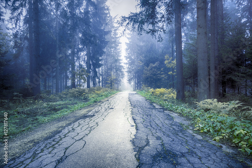 Beautiful blue foggy straight cracked asphalt forest road.