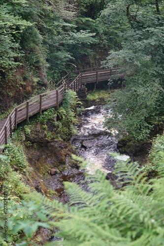 Tuinposter Weg in bos Wasserfall im Glenariff National Park / Nordirland