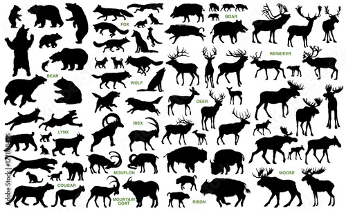 Valokuvatapetti Big mammals of the northern lands vector silhouettes collection