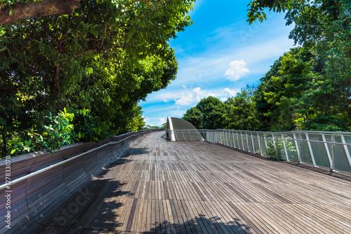 Landsccape view of Henderson Wave Bridge, Singapore Canvas Print