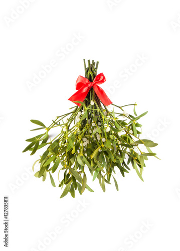 Obraz na plátně Broom from green mistletoe
