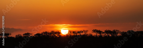 Poster Afrique Panorama of South African Sunset